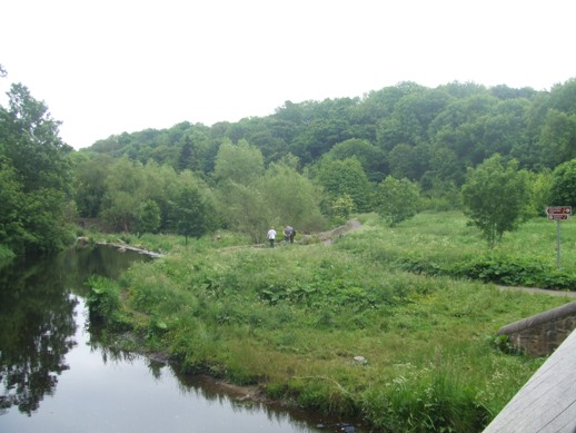 Green oasis on the Water of Leith