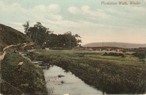 Plantation Walk, Wooler