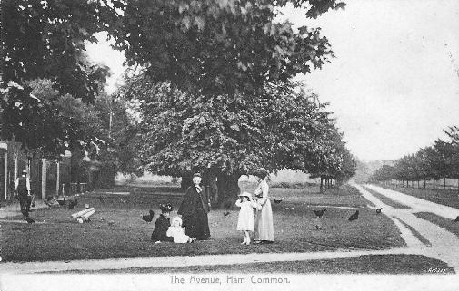 Ham Common, Surrey