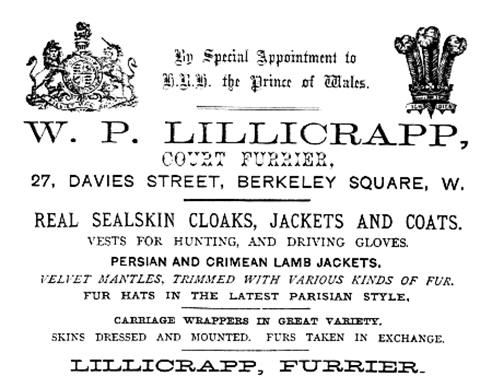 Lillicrapp Furrier Advertisement