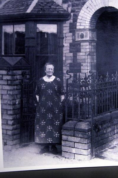 Rosa Madia in Llanfihangel Talyllyn