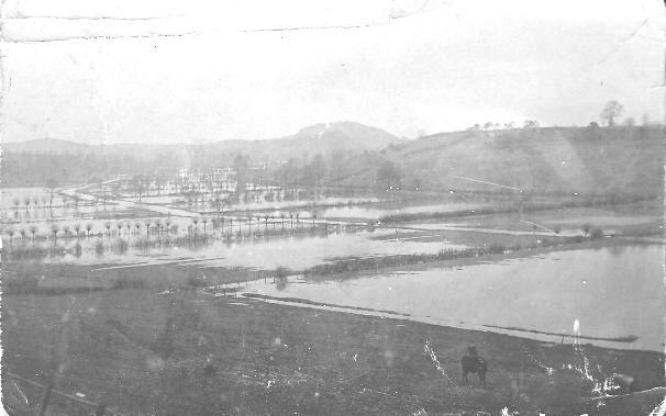 Somerton flood